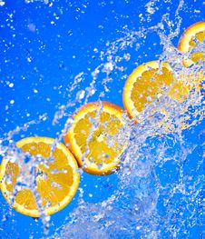 Free Orange Stock Photography - 8499552