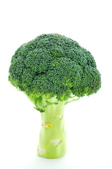 Free Broccoli Royalty Free Stock Images - 8499769
