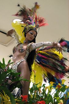 Free Mannequin With Feather Costume Stock Photos - 84900583