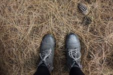 Free Person In Black Work Boots On Gray Hay Royalty Free Stock Photos - 84908508