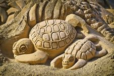 Free Sand Turtles Stock Images - 84910914