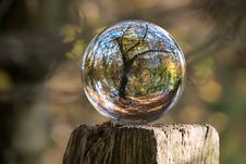 Free Glass Ball Reflecting Forest Stock Photo - 84913030
