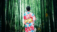 Free Japanese Geisha Between Bamboo Trees Royalty Free Stock Photo - 84913745