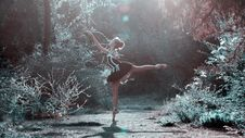Free Ballet Dancer In Forest Glade Royalty Free Stock Photo - 84915575