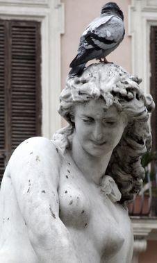 Free Italy Roma - Creative Commons By Gnuckx Stock Photography - 84928612