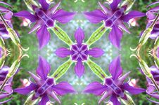 Free Kaleidoscope &x28;63&x29; Royalty Free Stock Images - 84929919