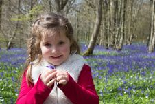 Free Girl In Red And Beige Jacket Holding Purple Petaled Flower Royalty Free Stock Image - 84933446