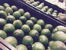 Free Fresh Avocados Stock Image - 84933941