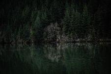 Free Evergreen Forest On Lake Coast Royalty Free Stock Photo - 84934675