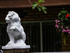 Free Lions Of Vancouver --eastvan-photowalk-vancouver-em10-75-300mm-20150517-P5170049 Stock Photo - 84934870