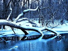 Free Pond In Winter Stock Photos - 84937593