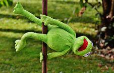 Free Kermit The Frog Toy Royalty Free Stock Photos - 84937638