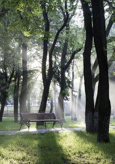 Free Misty Park Stock Photography - 84939372