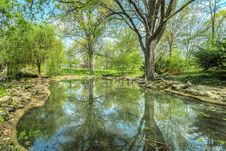 Free Pond In Park Stock Image - 84940501