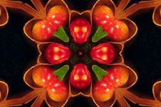 Free Kaleidoscope Design 24 Royalty Free Stock Photos - 84946518
