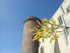 Free Castell Santo Severo Royalty Free Stock Image - 84948226