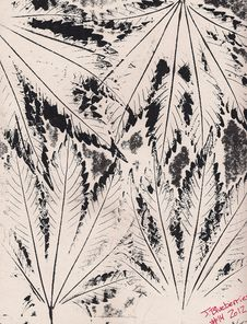 Free Abstract Ink Leaf Drawing Stock Photography - 84956682