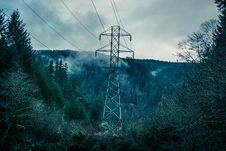 Free High Voltage Line In Forest Stock Image - 84958621