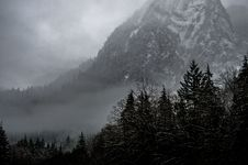 Free Grayscale Photography Of Pine Trees Covered With Fog Near Snowy Mountain Royalty Free Stock Images - 84963509