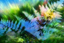 Free Exploding Ferns With Green Royalty Free Stock Images - 84964789