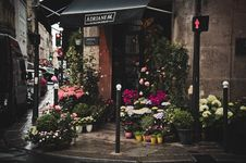 Free Pavement Flower Stall On City Street Royalty Free Stock Image - 84965236