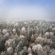 Free Aerial View Of Forest In Winter Stock Photos - 84970443