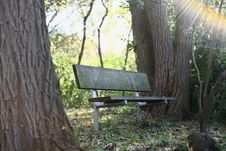 Free Bench In Park Stock Image - 84997061
