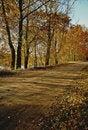 Free Autumn In Poland Stock Photos - 856503