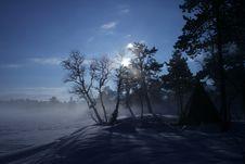 Free Blue Winter Sun Stock Photography - 850542