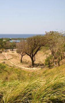 Grassland By The Ocean Stock Photos