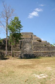 Mayan Ruin Stock Photography