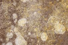 Free Wall Texture Royalty Free Stock Photos - 855668
