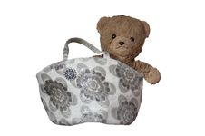 Free Teddy In The Bag Stock Image - 856311