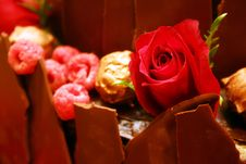 Free Rose Decorated Berry Chocolate Cake Royalty Free Stock Images - 856779