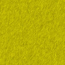 Free Mix Brown Yellow Green Shades Royalty Free Stock Images - 858559