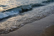 Ocean Shore Stock Images