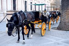 Free Spanish Horse Drawn Carriage Awaiting Tourists In Seville Royalty Free Stock Images - 859679