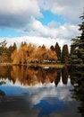 Free Refective Autumn Pond Stock Image - 8501661