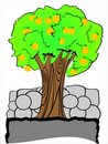 Free Vector Oranges Tree Royalty Free Stock Image - 8502716