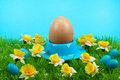 Free Easter Eggs In Spring Royalty Free Stock Photos - 8504648