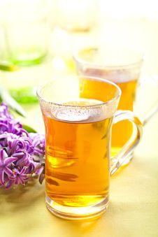 Free Rooibos Tea Stock Photos - 8500483