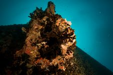 Free Port Side Hill Anchor Of The Thistlegorm Royalty Free Stock Photos - 8500608