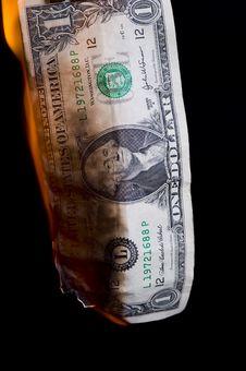 Free Dollar Royalty Free Stock Photo - 8500905