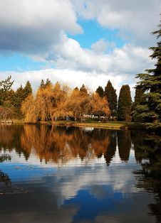 Free Refective Autumn Pond Stock Image - 8501661