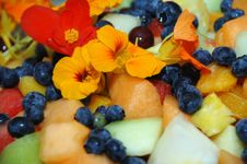 Free Fruit Salad With Nasturtium Petals Royalty Free Stock Images - 8503069