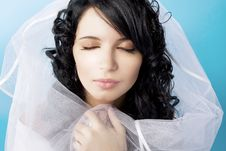 Free Beautiful Brunette Bride On A Blue Background Stock Images - 8503474