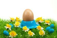 Free Easter Eggs In Spring Royalty Free Stock Photo - 8504615