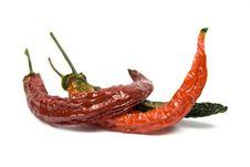 Free Dried Chili Stock Photos - 8504753