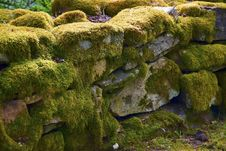 Free Moss On Stone Wall Stock Photography - 8504832