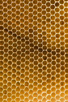 Free Honeycomb Royalty Free Stock Images - 8508109